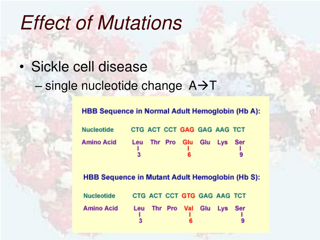Effect of Mutations