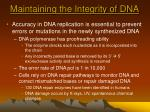 maintaining the integrity of dna