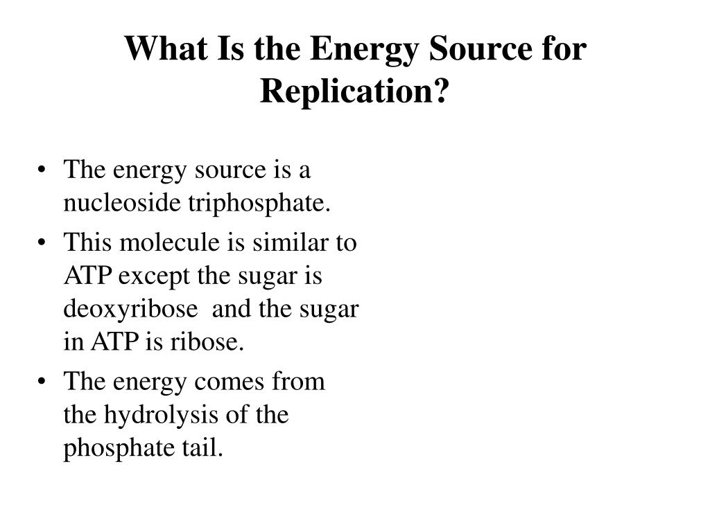 What Is the Energy Source for Replication?