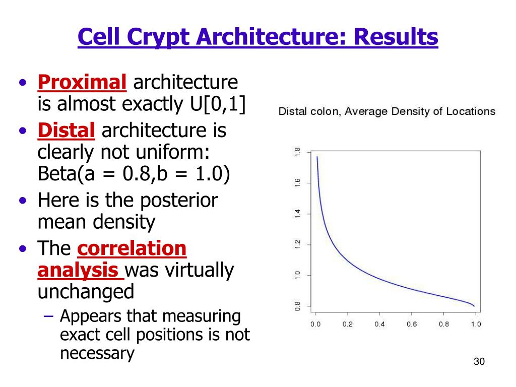Cell Crypt Architecture: Results