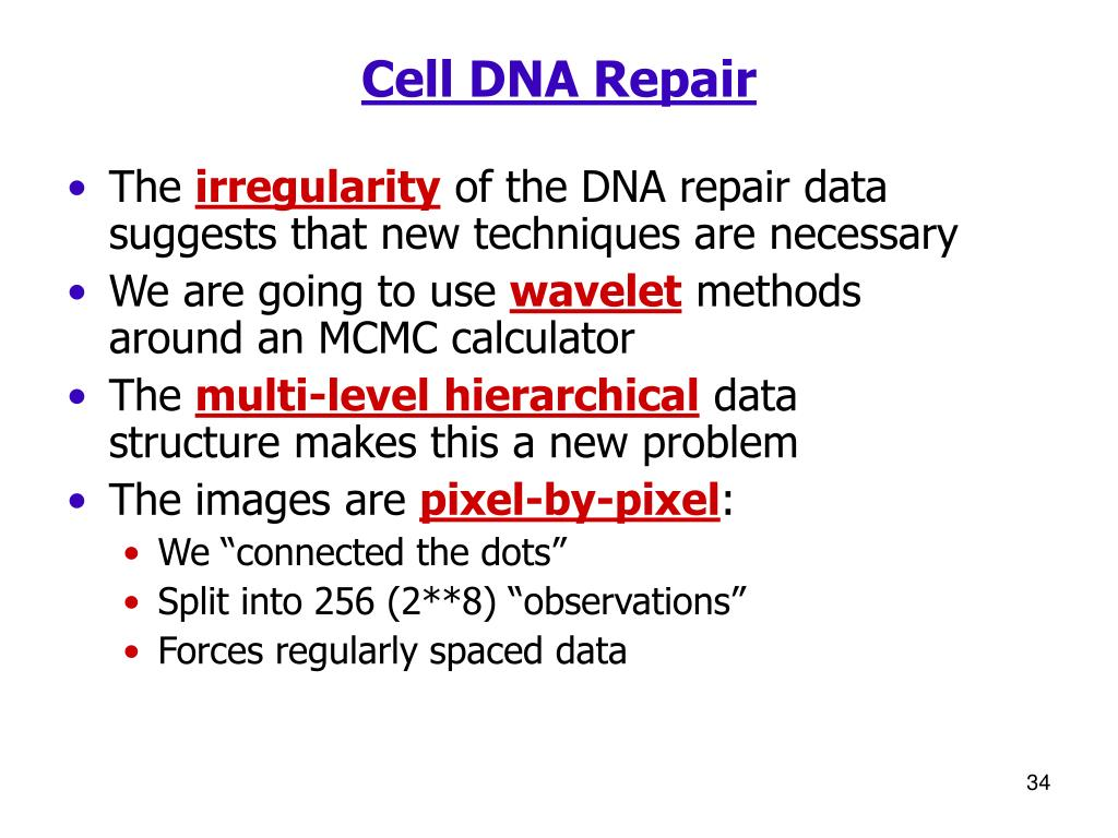 Cell DNA Repair