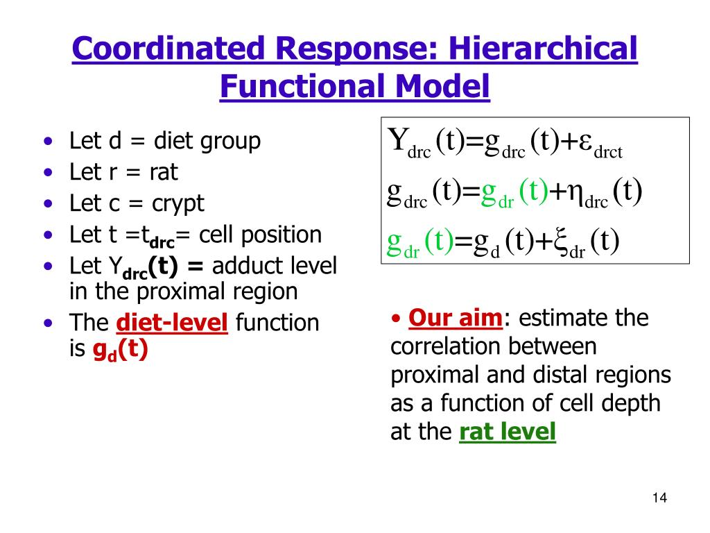 Coordinated Response: Hierarchical Functional Model