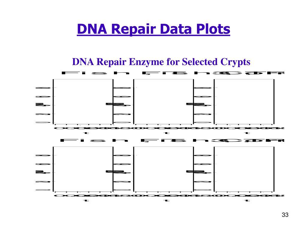 DNA Repair Data Plots