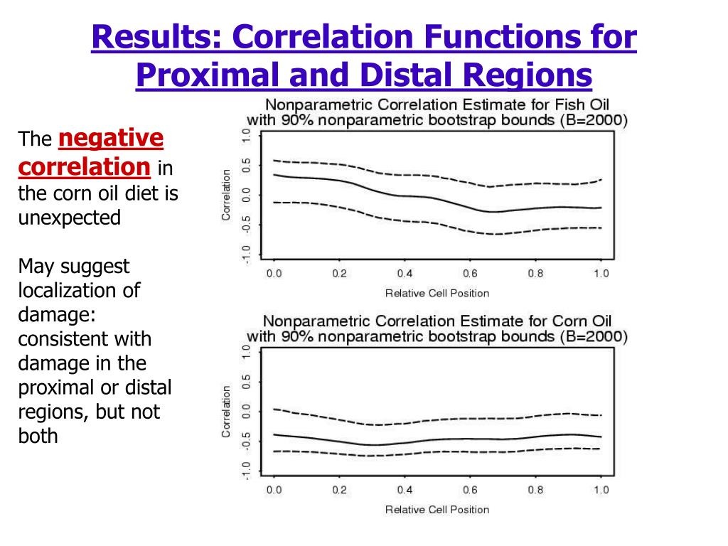 Results: Correlation Functions for Proximal and Distal Regions