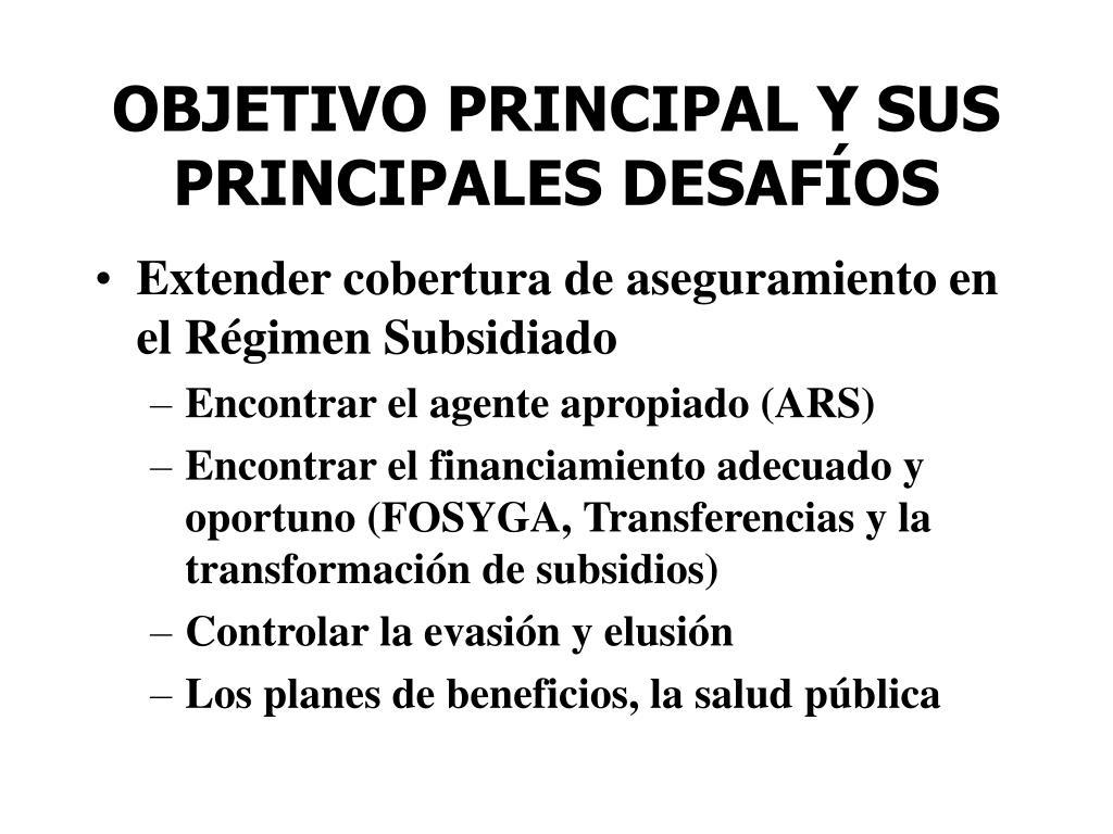 OBJETIVO PRINCIPAL Y SUS PRINCIPALES DESAFÍOS