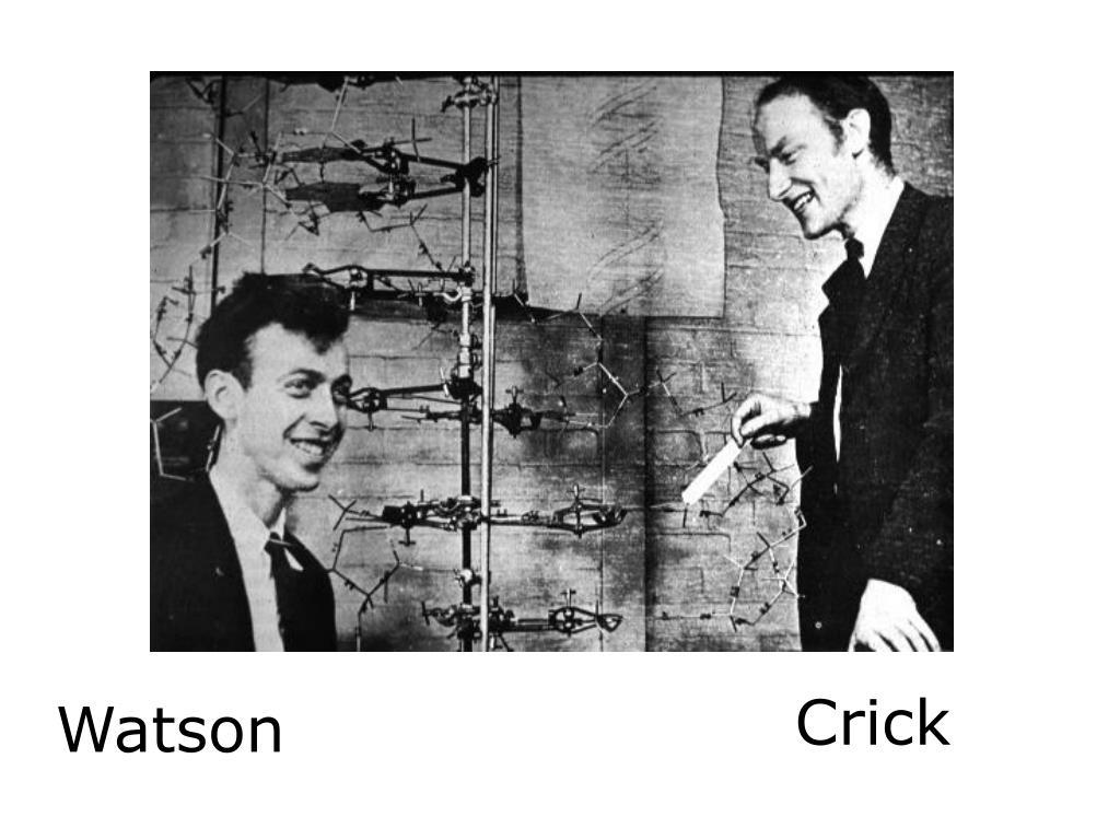 Crick