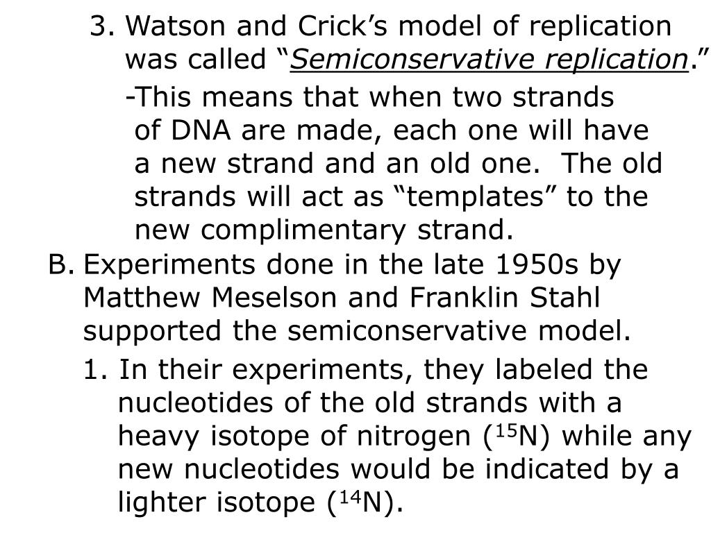 Watson and Crick's model of replication