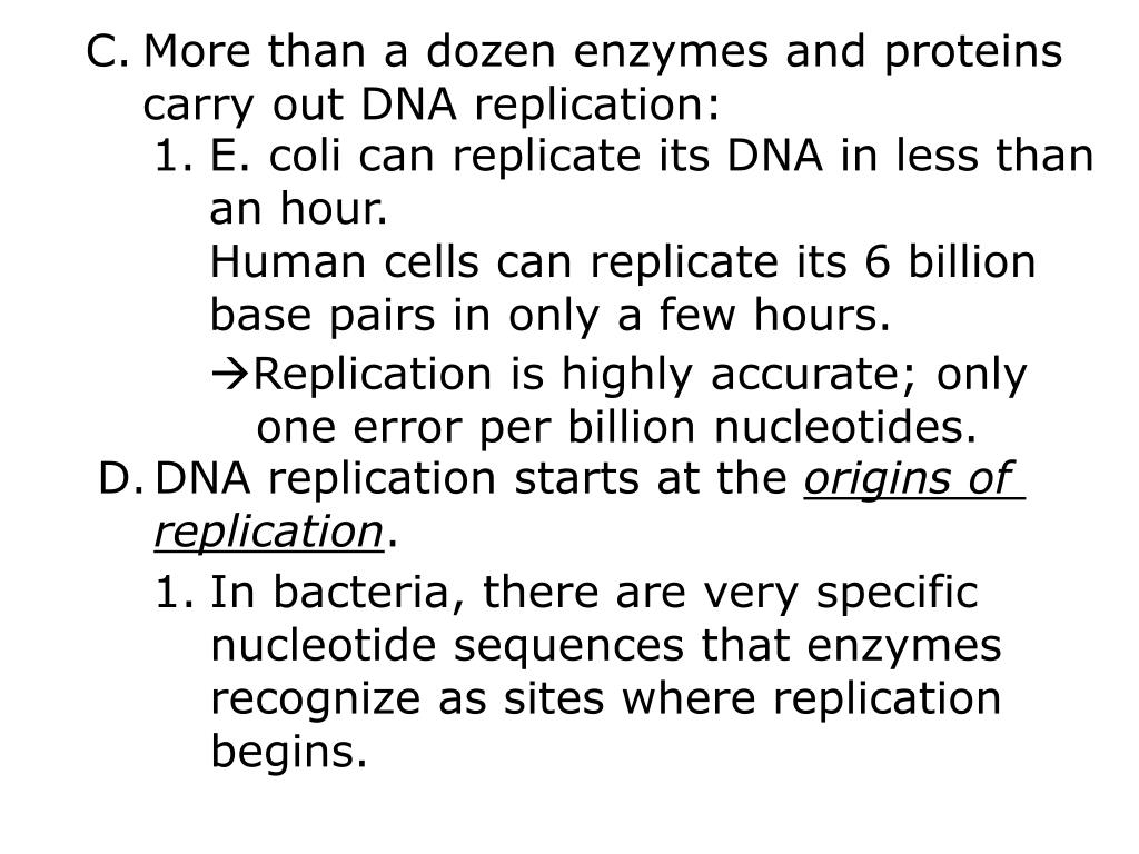 More than a dozen enzymes and proteins