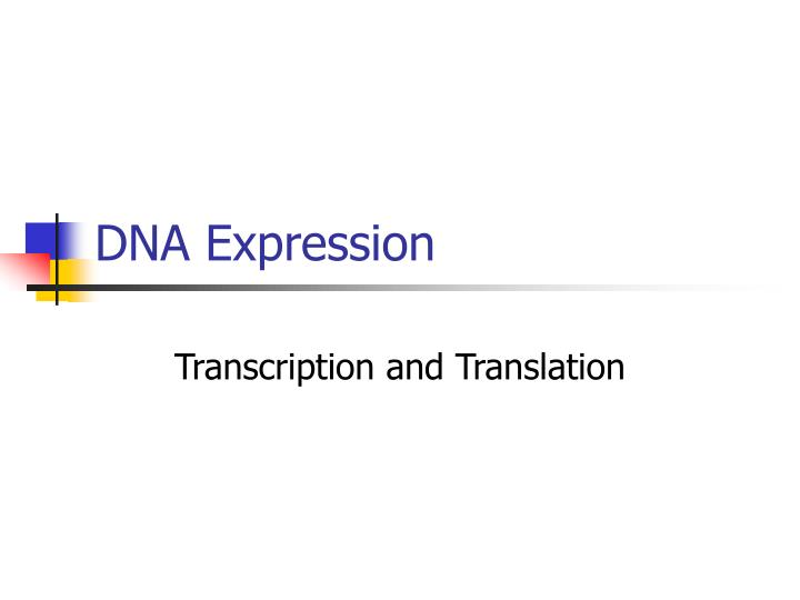 DNA Expression