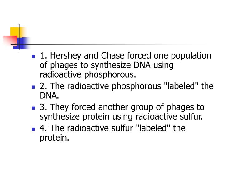 1. Hershey and Chase forced one population of phages to synthesize DNA using radioactive phosphorous.