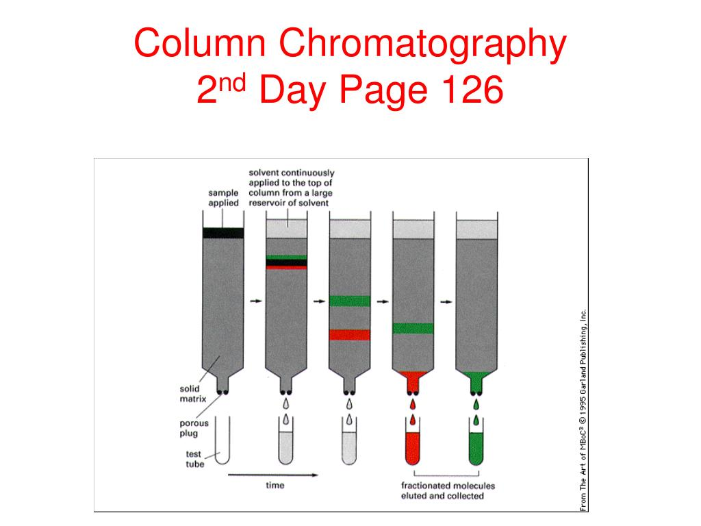 protein purification Chapter 2 strategies and considerations for protein purifications pages 9-19   chapter 3 use of bioinformatics in planning a protein purification pages 21-28.