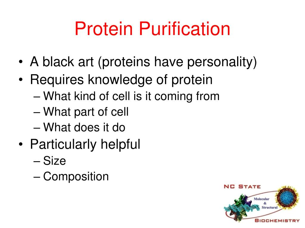 protein purification Offering an exhaustive range of protein purification and analysis services, proteos, inc also has the ability to create customizable protein analytics packages.