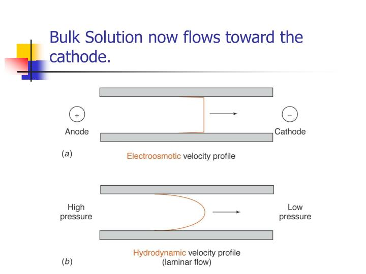 Bulk Solution now flows toward the cathode.