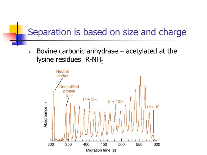 Separation is based on size and charge