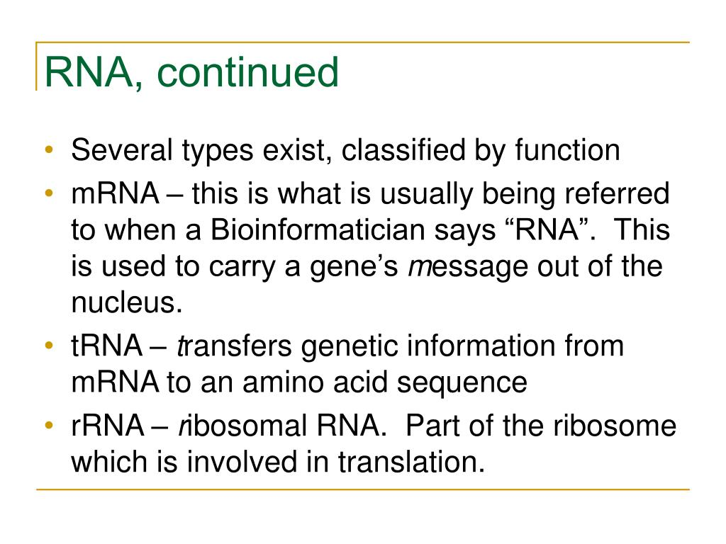 RNA, continued