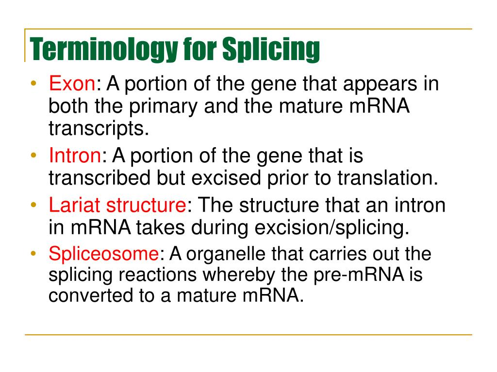 Terminology for Splicing