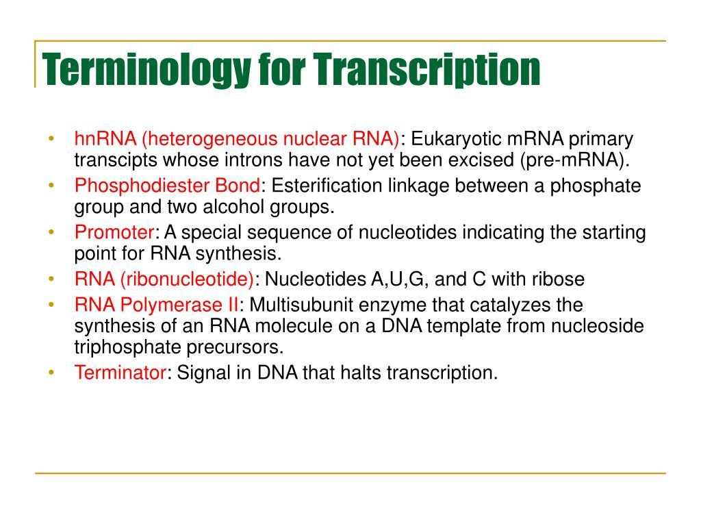 Terminology for Transcription