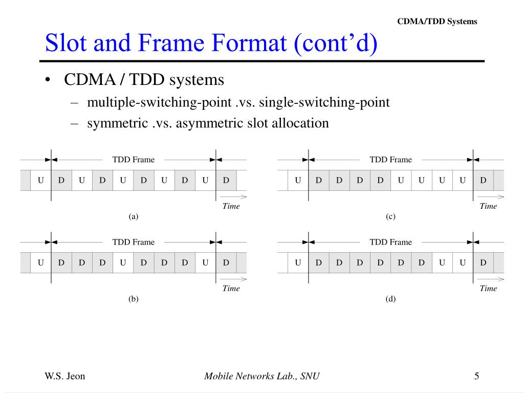 Slot and Frame Format (cont'd)