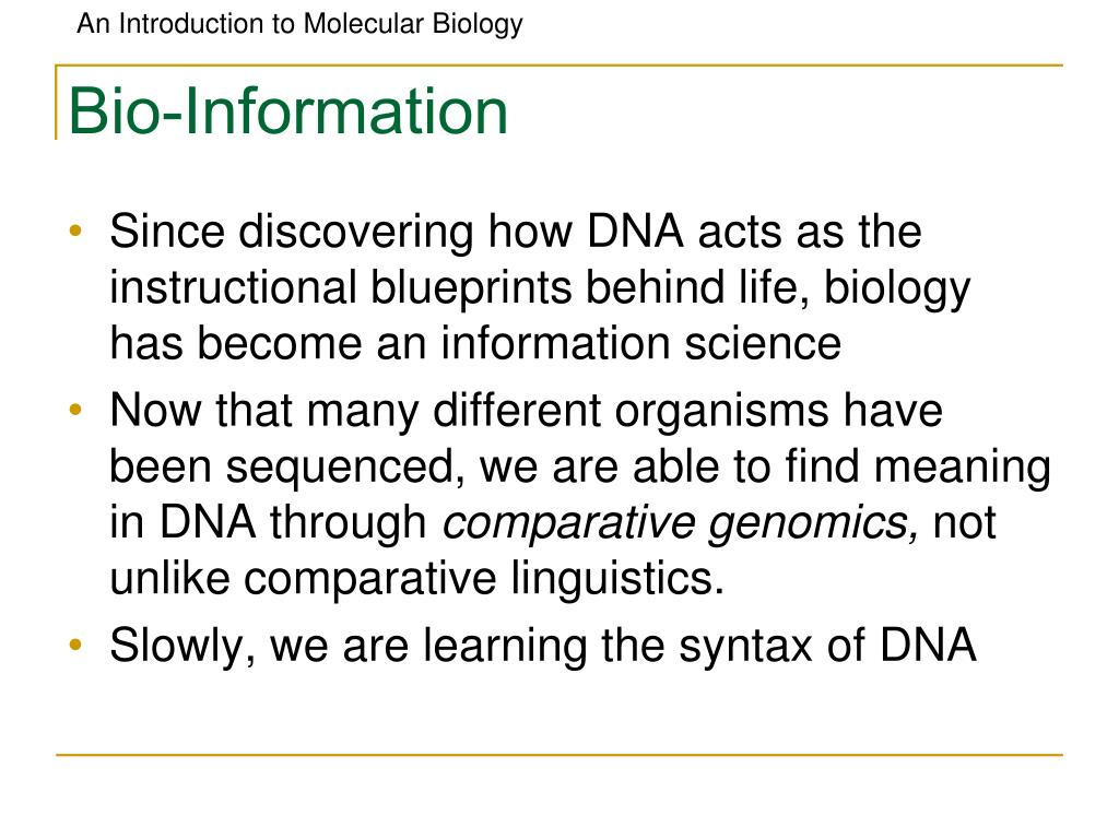 Bio-Information