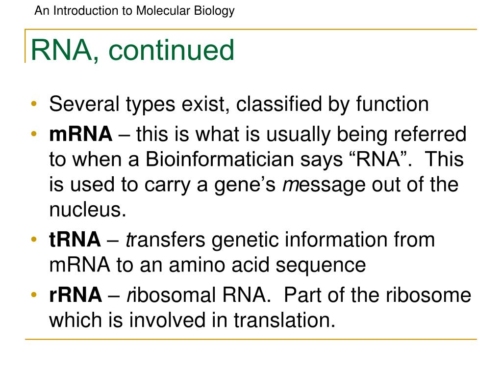 RNA, continued