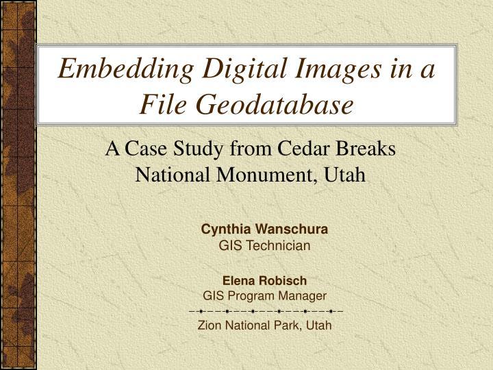 Embedding Digital Images in a File Geodatabase