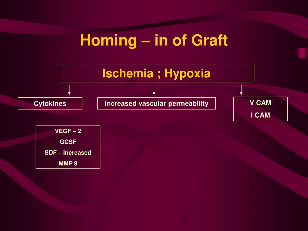Homing – in of Graft