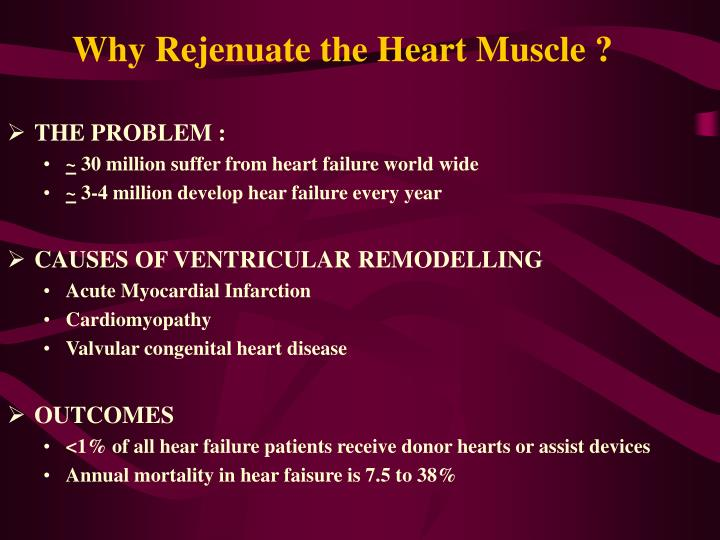 Why rejenuate the heart muscle