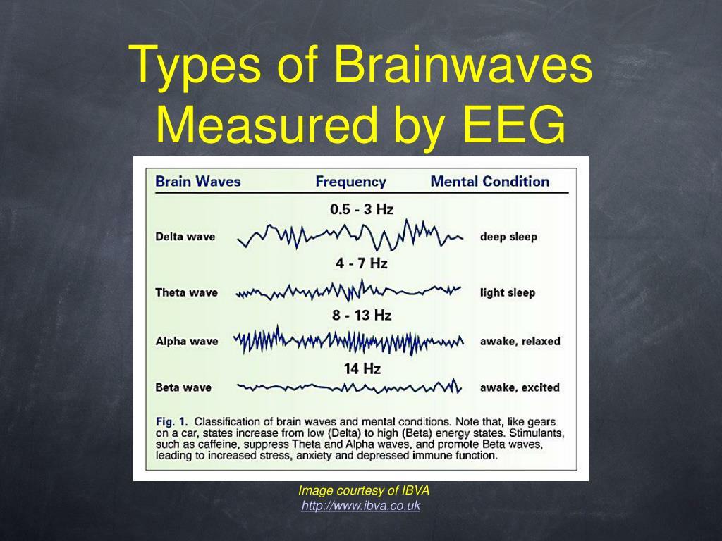 Types of Brainwaves Measured by EEG