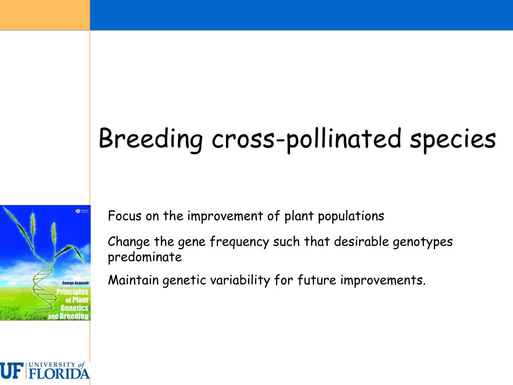 Breeding cross-pollinated species