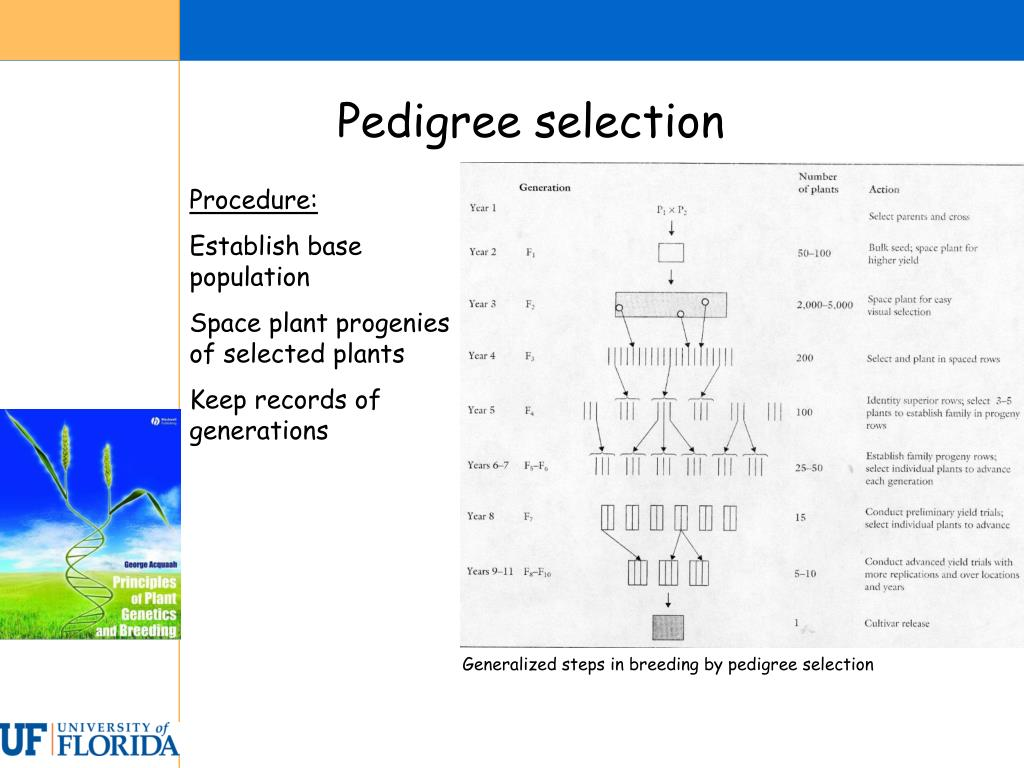 Pedigree selection