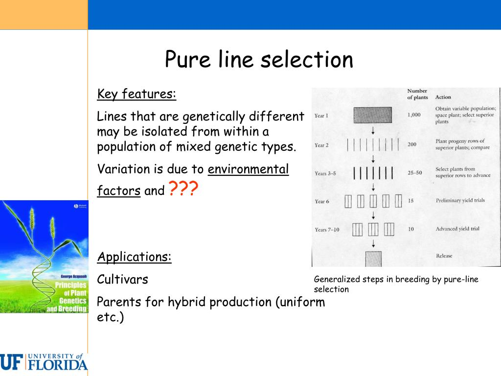 Pure line selection