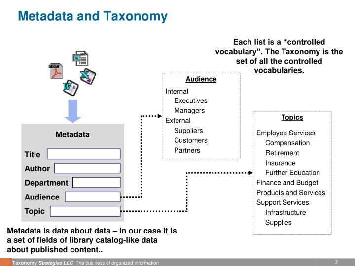 Metadata and taxonomy