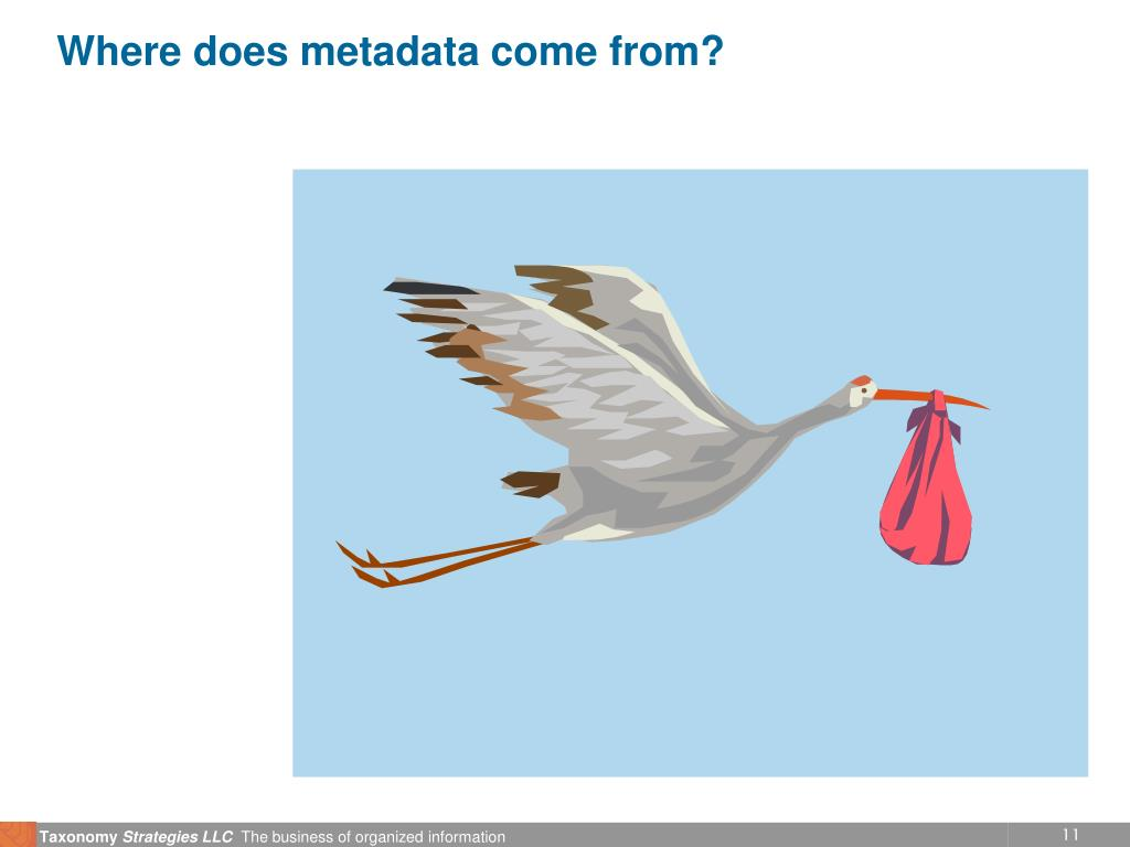 Where does metadata come from?