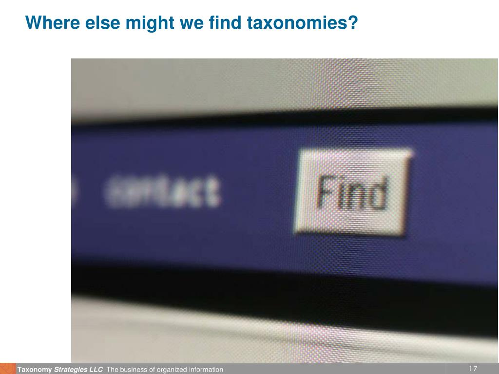 Where else might we find taxonomies?