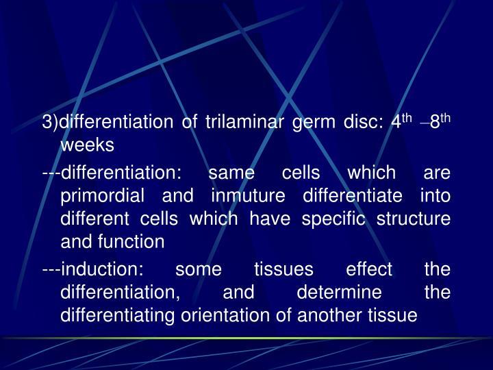 3)differentiation of trilaminar germ disc: 4