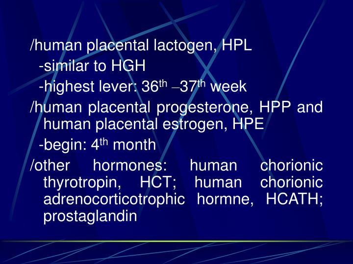 /human placental lactogen, HPL