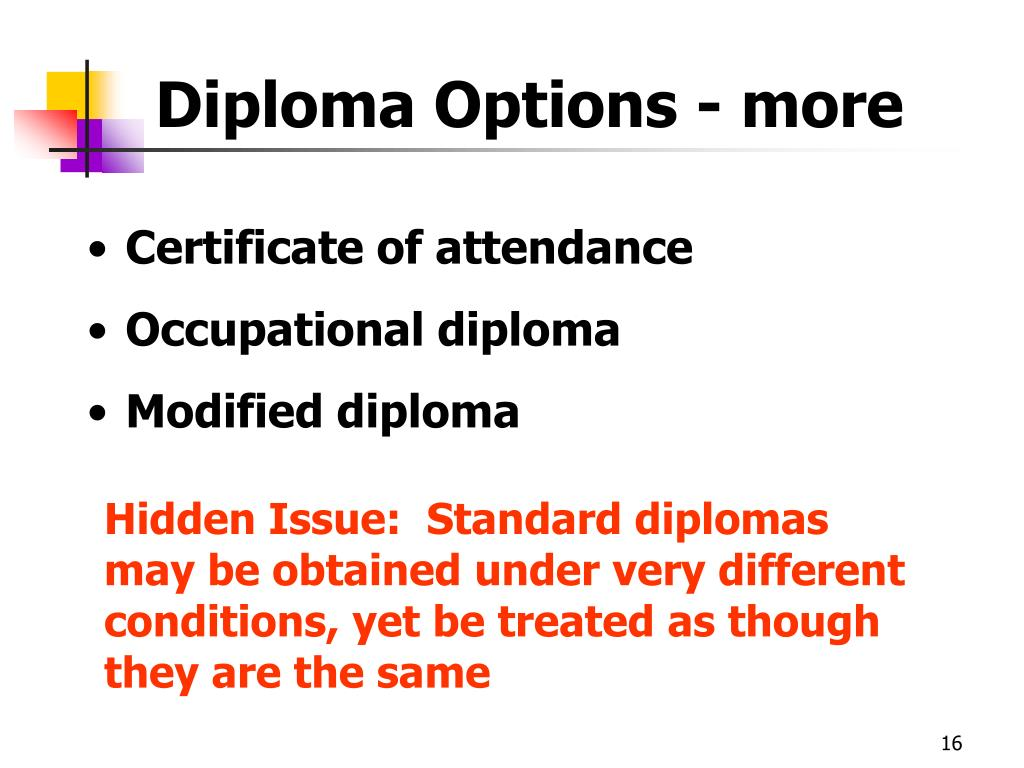 Diploma Options - more