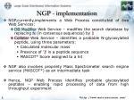 ngp implementation