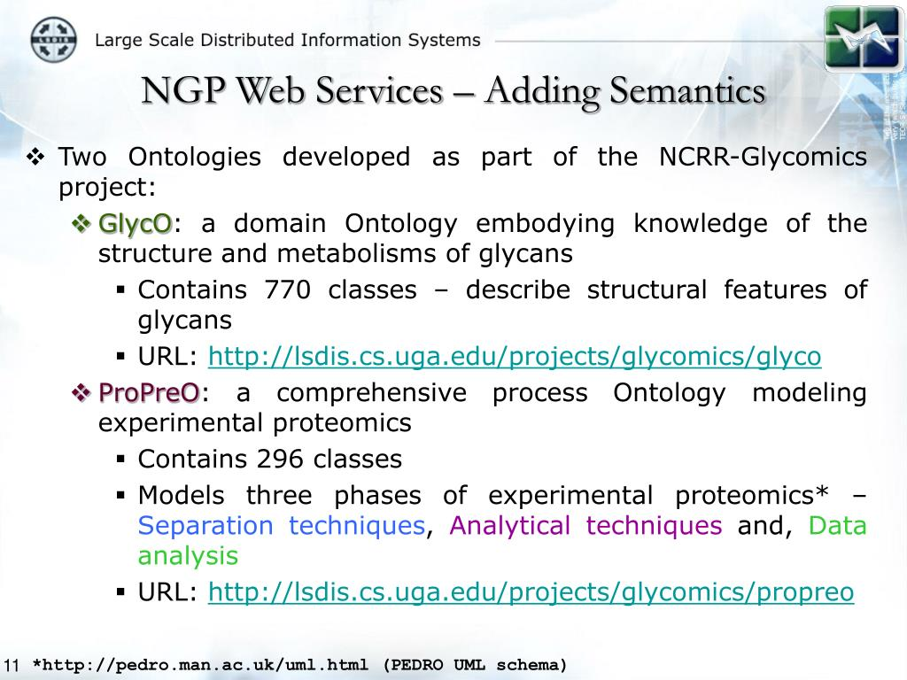 NGP Web Services – Adding Semantics