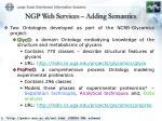 ngp web services adding semantics