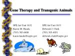gene therapy and transgenic animals