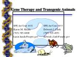 gene therapy and transgenic animals23