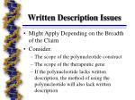 written description issues