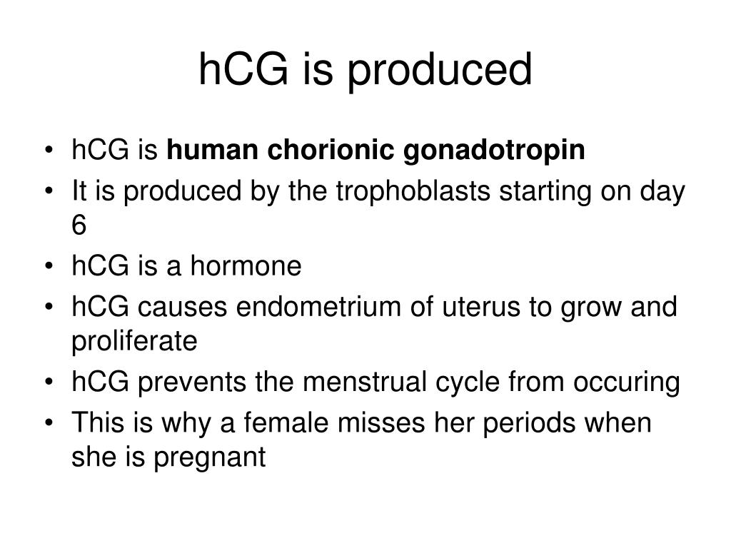 hCG is produced
