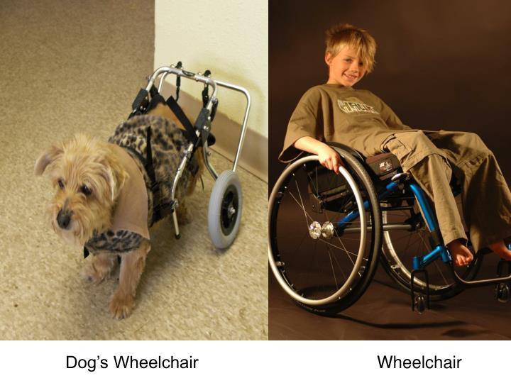 Dog's Wheelchair