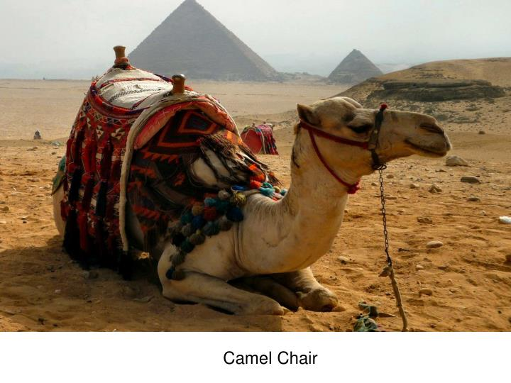 Camel Chair