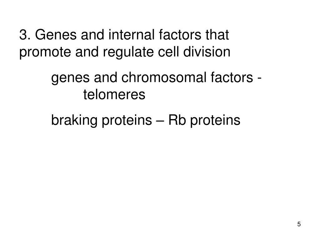 3. Genes and internal factors that promote and regulate cell division