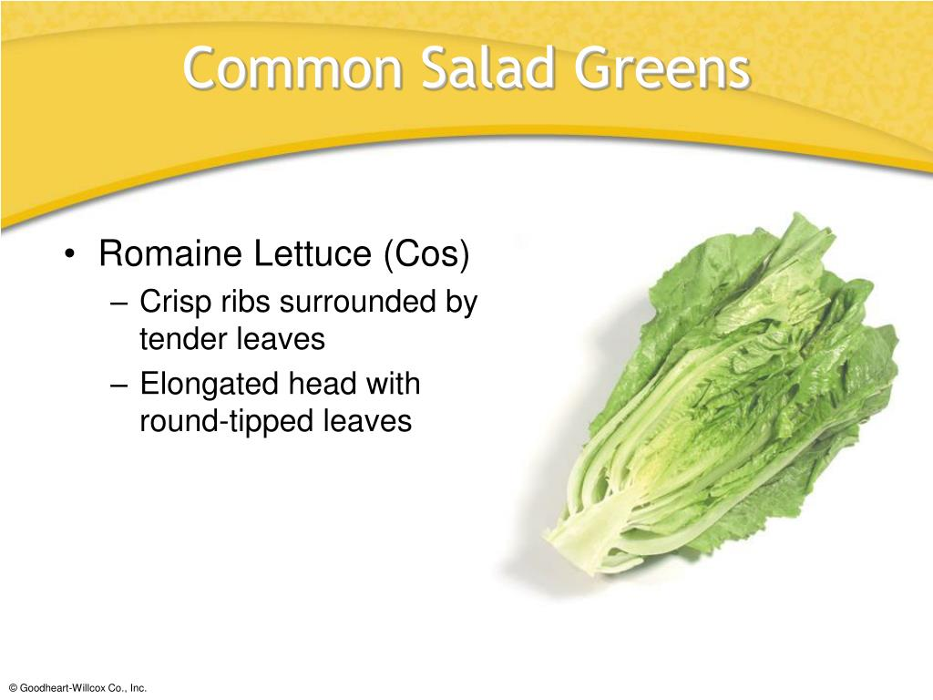 Romaine Lettuce (Cos)
