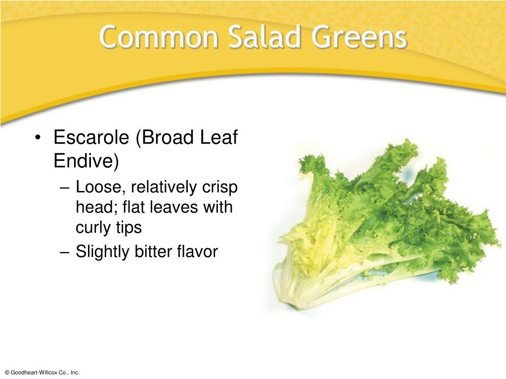Escarole (Broad Leaf Endive)