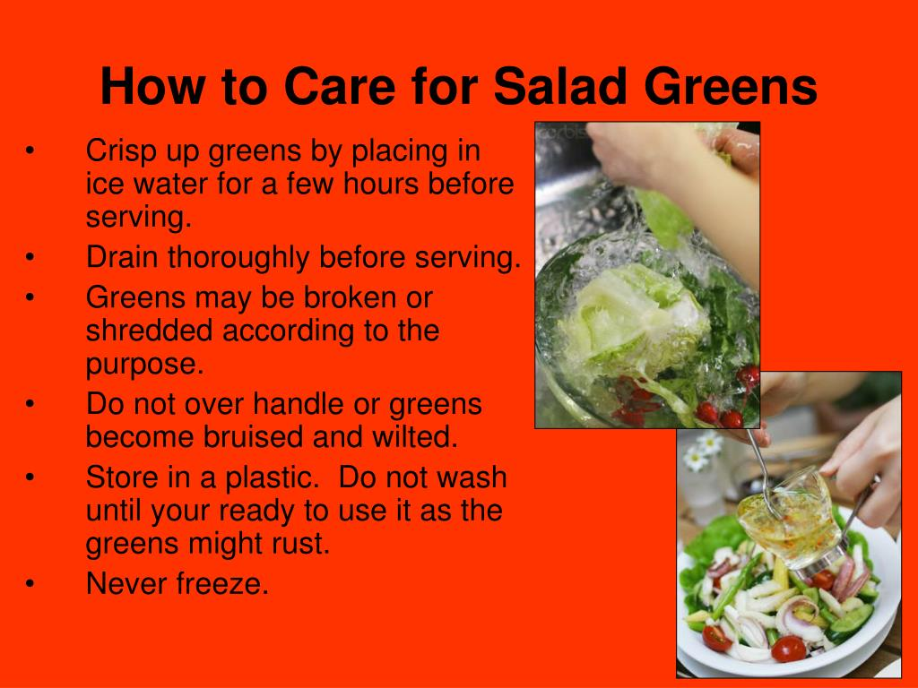 How to Care for Salad Greens